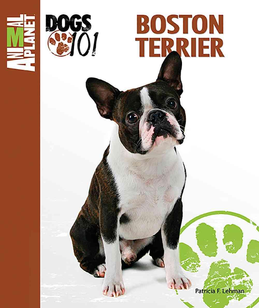 Boston Terrier By Lehman, Patricia F.